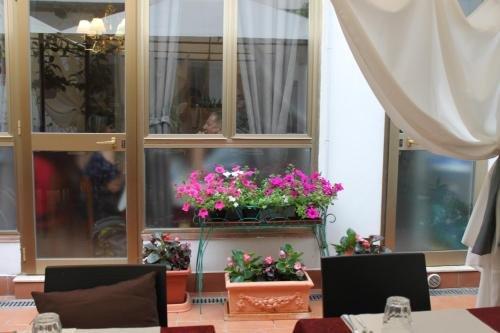 Hotel Dalmazia - фото 21