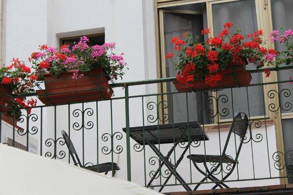 Hotel Dalmazia - фото 23