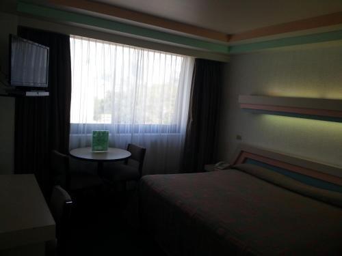 Hotel Puebla - фото 1