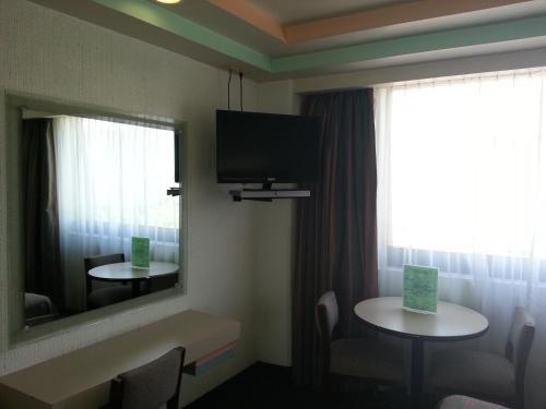 Hotel Puebla - фото 2