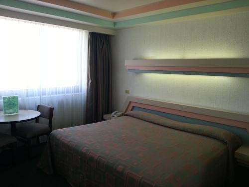 Hotel Puebla - фото 3
