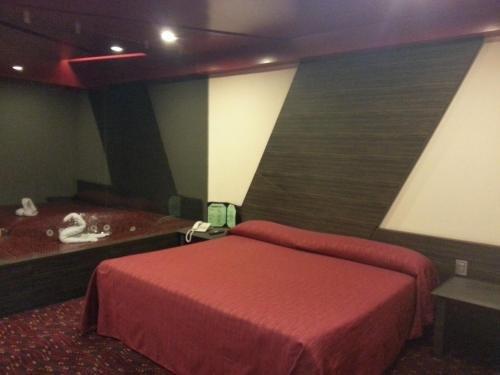 Hotel Puebla - фото 5