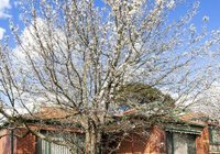 Отзывы Apartments @ Mount Waverley, 4 звезды