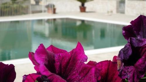 Hotel Ristorante Colle Del Sole - фото 18