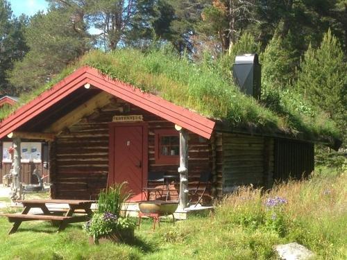 Гостевой дом «Batsto Camping», Elgà