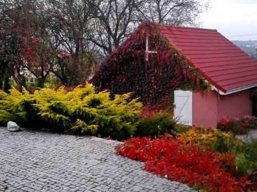 Villa Krakow - фото 19