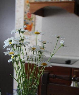 Holiday home Matkachi - фото 12
