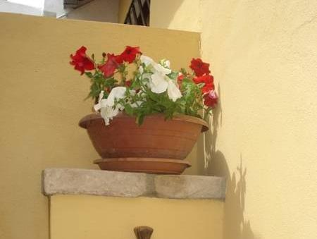 Guest House Il Giardino Segreto - фото 13