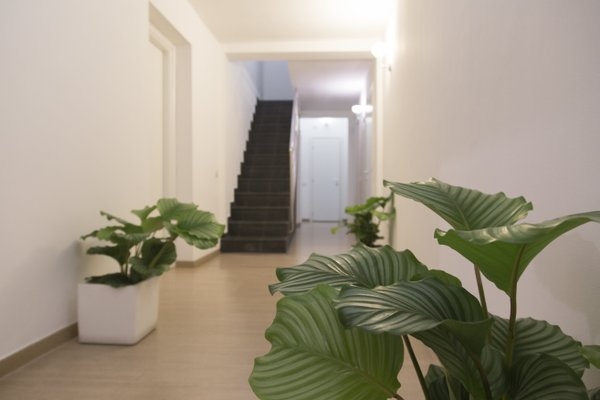 Suite Inn Catania - фото 20