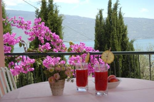 Hotel Villa Europa - фото 17