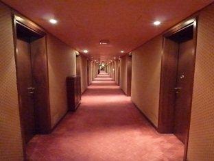 Hotel Pagoda - фото 13