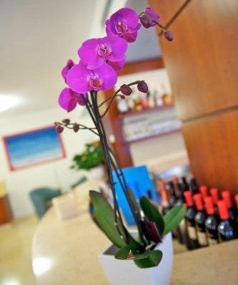 Hotel Garni Orchidea - фото 7