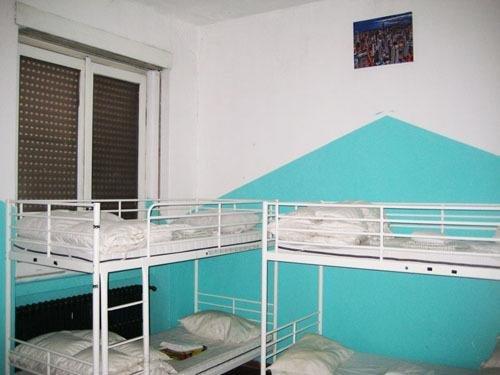 Zebra Hostel - фото 0