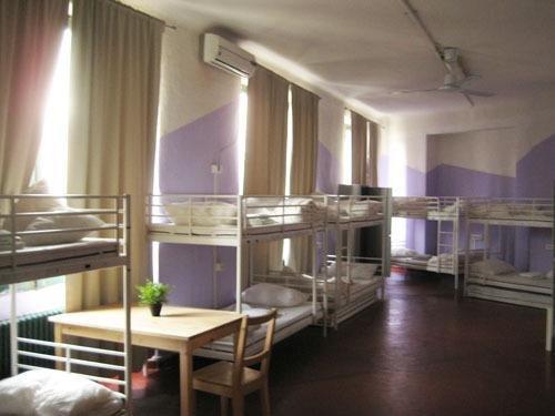 Zebra Hostel - фото 1