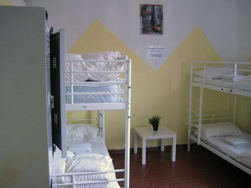 Zebra Hostel - фото 2