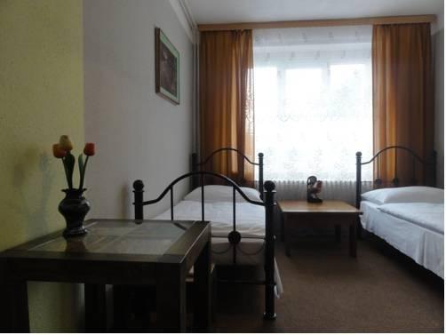 Hotel Bor - фото 3