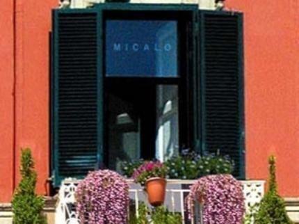 Micalo - фото 23