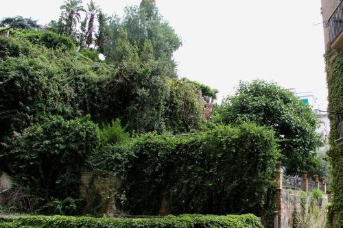 Bonapace Mergellina - фото 20
