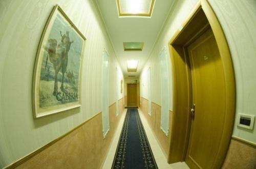 Hotel Alba - фото 18
