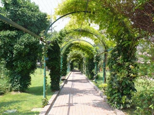 Parc Hotel Villa Immacolata - фото 18