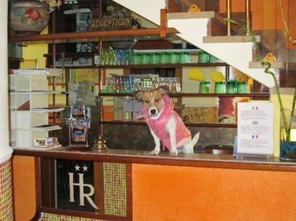 Hotel Roseto - фото 12