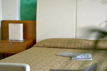 Hotel Galilei - фото 4