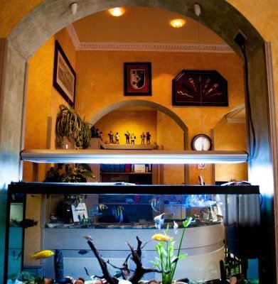 Hotel Villa Primavera - фото 10
