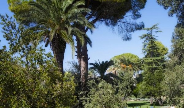 Villa Arditi - фото 19