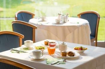 Hotel Brione - фото 10