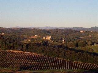 Castello di Monteliscai - фото 17