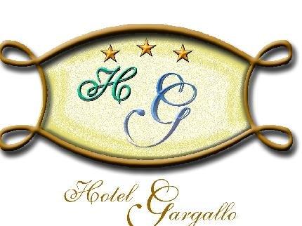 Hotel Gargallo - фото 12