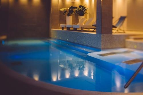 Hotel Olivi Thermae & Natural Spa - фото 16