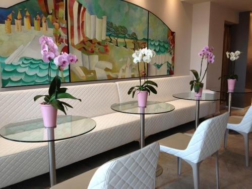Hotel Olivi Thermae & Natural Spa - фото 9