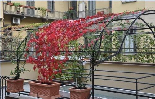 Hotel Roma e Rocca Cavour - фото 21
