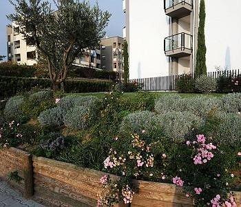 Residence Lorenzo Da Viterbo - фото 9