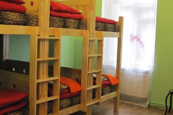 Tiger Hostel - фото 4