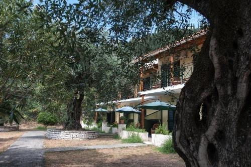 Villa Rita & Helena - фото 39