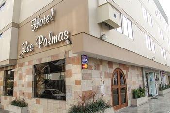 Hotel Las Palmas - фото 13