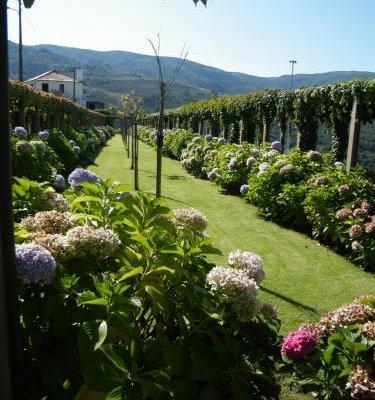 INATEL Linhares da Beira Hotel Rural - фото 19