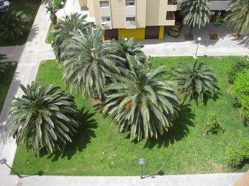 Apartamentos Plaza Picasso - фото 20
