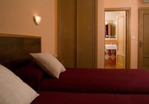 Hotel Ruta del Poniente - фото 3