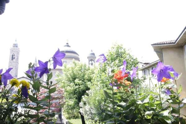 Fleur De Lis Belvedere - фото 16