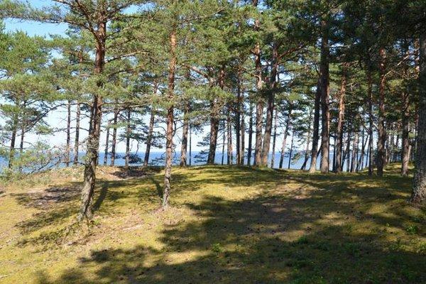 Lohusalu Accommodation - фото 4