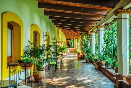 Hotel Hacienda Los Laureles - фото 11