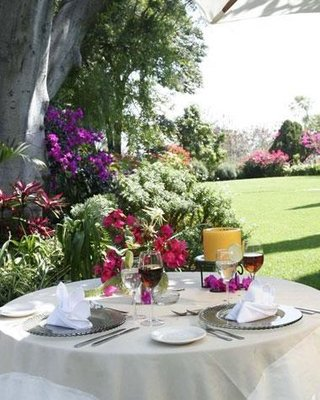 Hotel Hacienda Los Laureles - фото 17