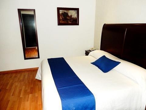 Hotel Roma Guadalajara - фото 2