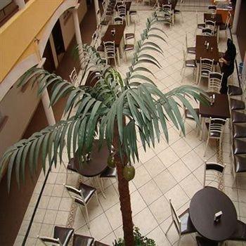 Hotel Real Madero - фото 9