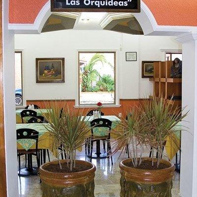 Hotel Suites Campestre - фото 17