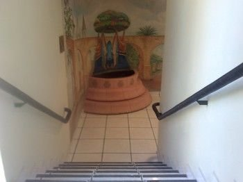 Hotel Diana del Bosque - фото 16