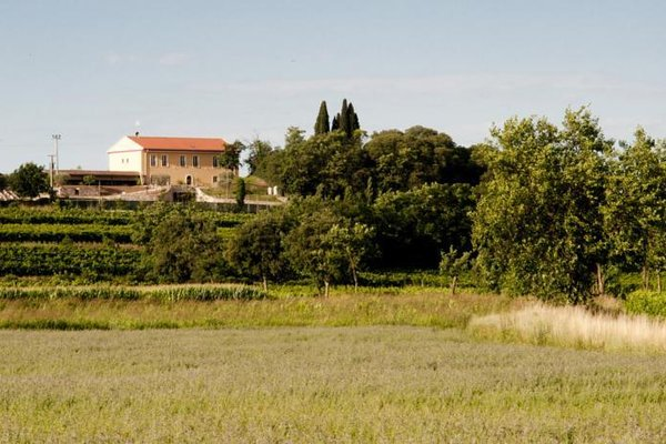 Agriturismo Panorama - фото 17